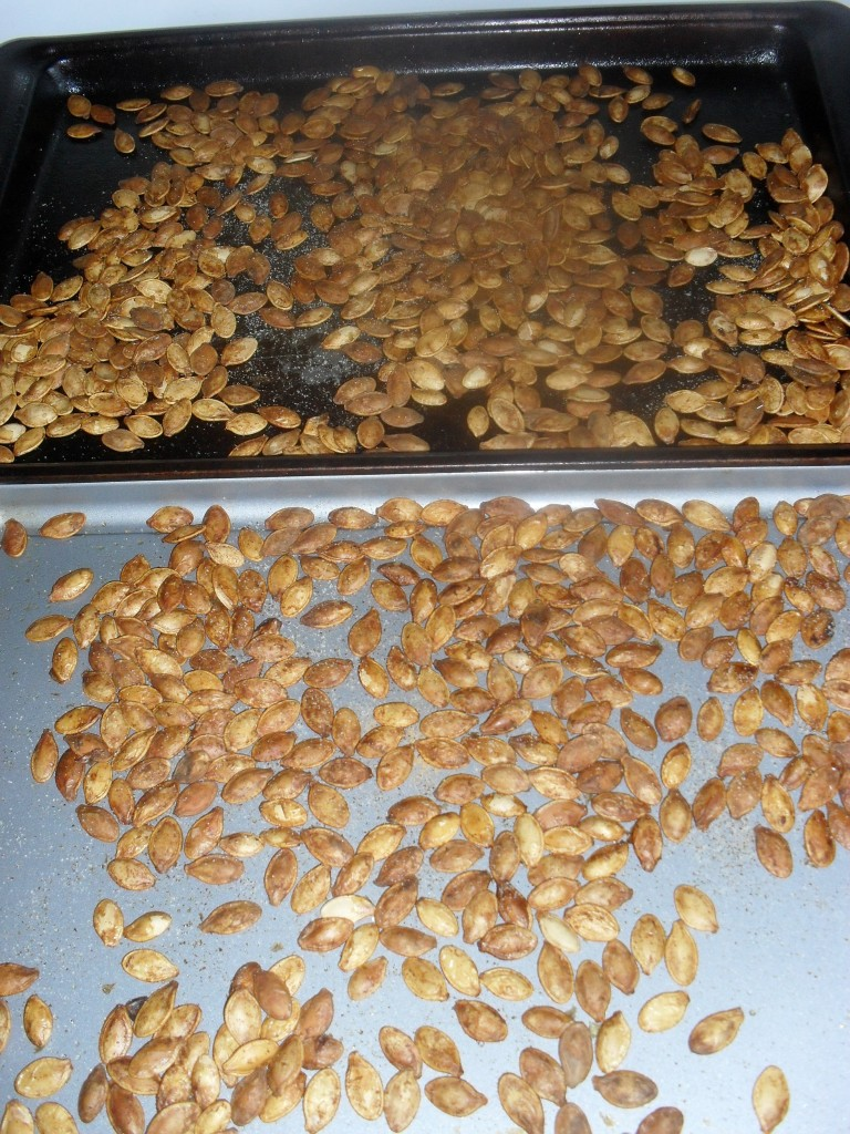 thanksgiving pumpkin seeds