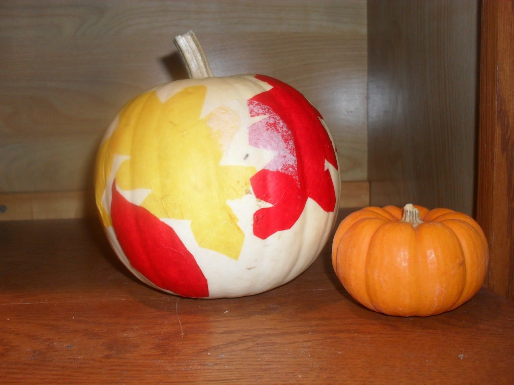 different pumpkin projects