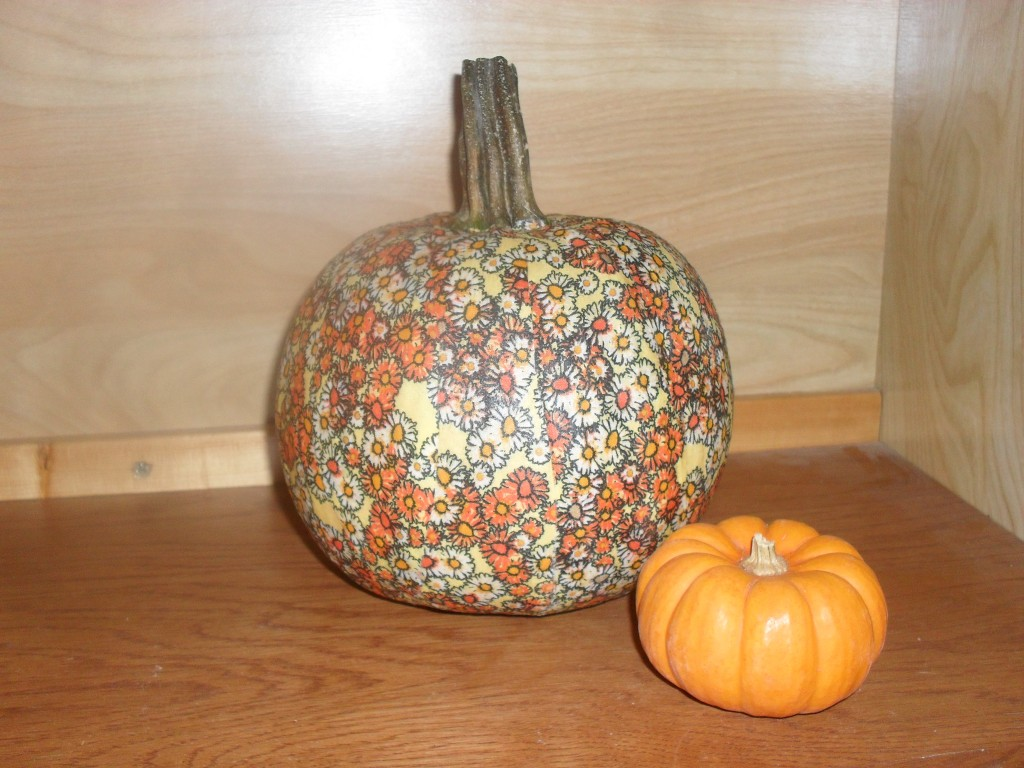 pumpkin projects