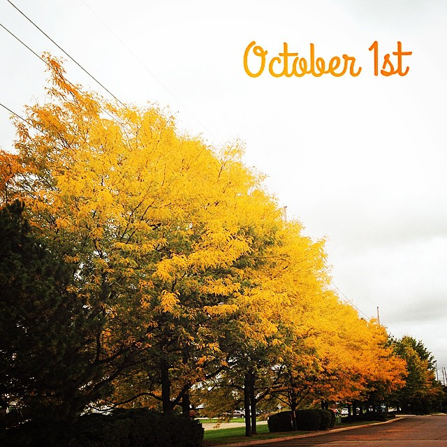 Happy October - The Leaves are Changing