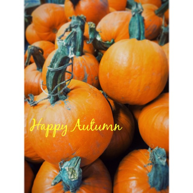 Happy First Day of Autumn…I got in the fall spirit after finding these beautiful pumpkins!