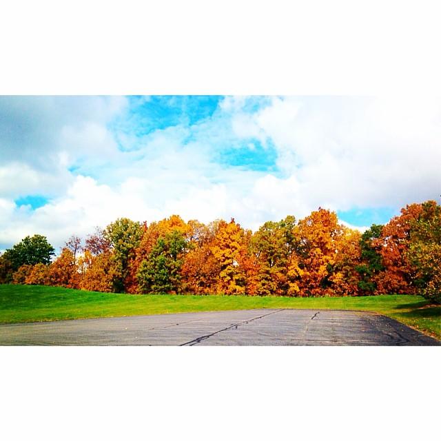 It's a beautiful fall day!