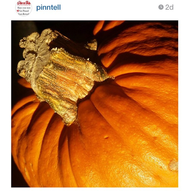 Happy Halloween! I am featured for @pinntell #pinspiration #challenge next week! What do you think it could be from this picture?