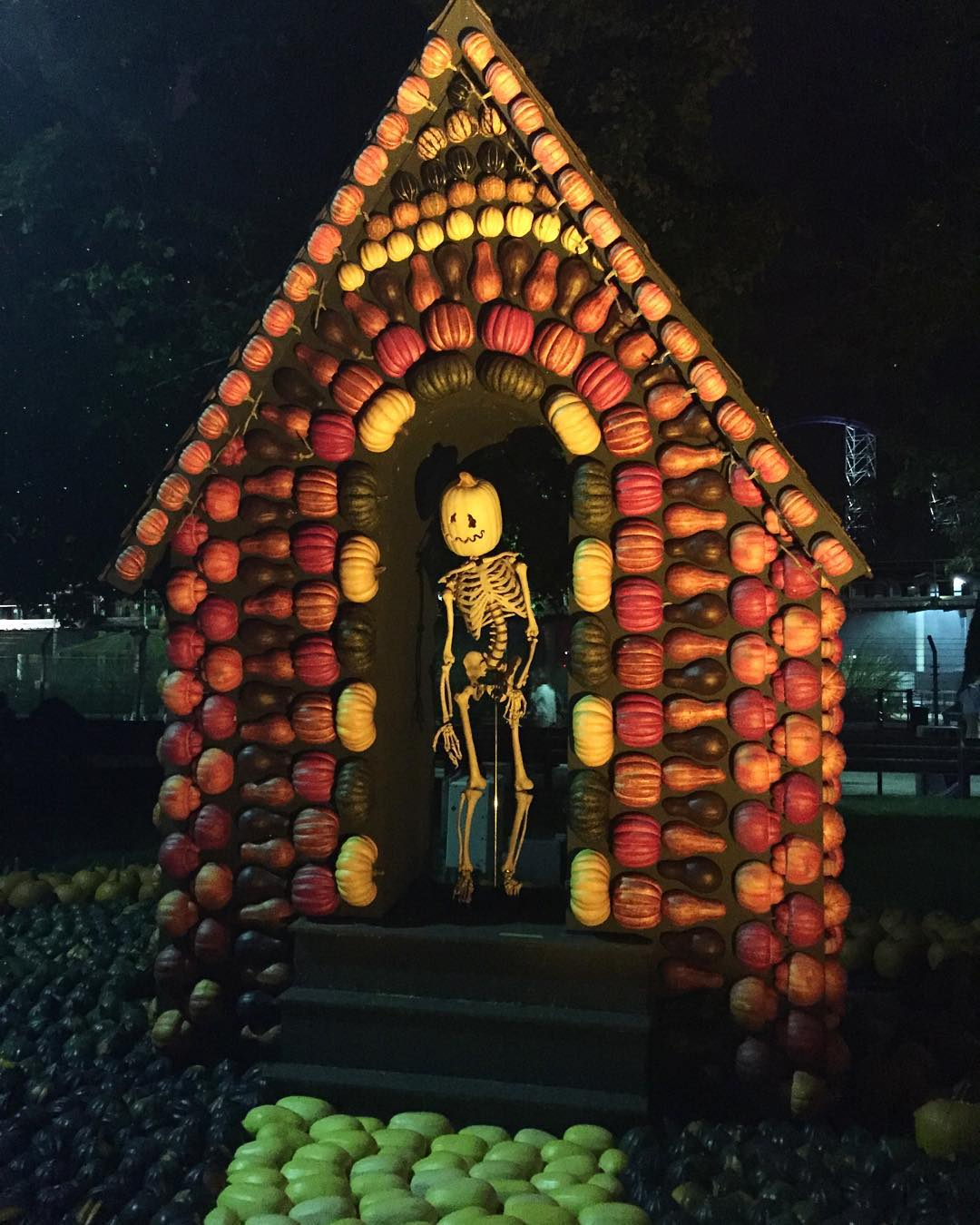 Skeleton house at #halloweekends at @cedarpoint 💀
