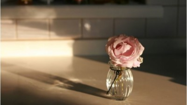 Make Your Home Sparkle in Thirty Minutes