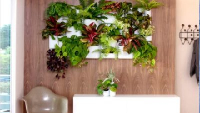 DIY Vertical Gardening Ideas for Your Home
