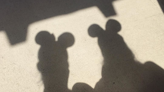 Mice shadows 🐭 #hiddenmickey