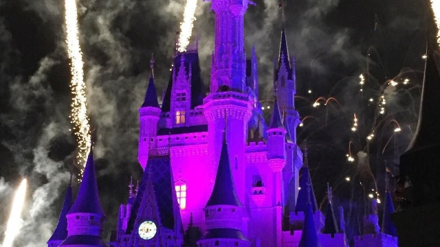 Wishes! Anyone notice the hidden Mickey? 👀