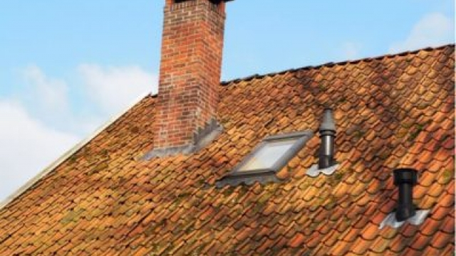 Replacing Your Roof: Don't Miss These Warning Signs