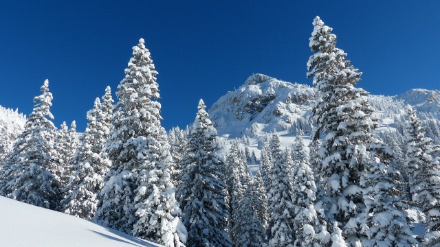 The Best Places In The World To Ski Your Heart Out