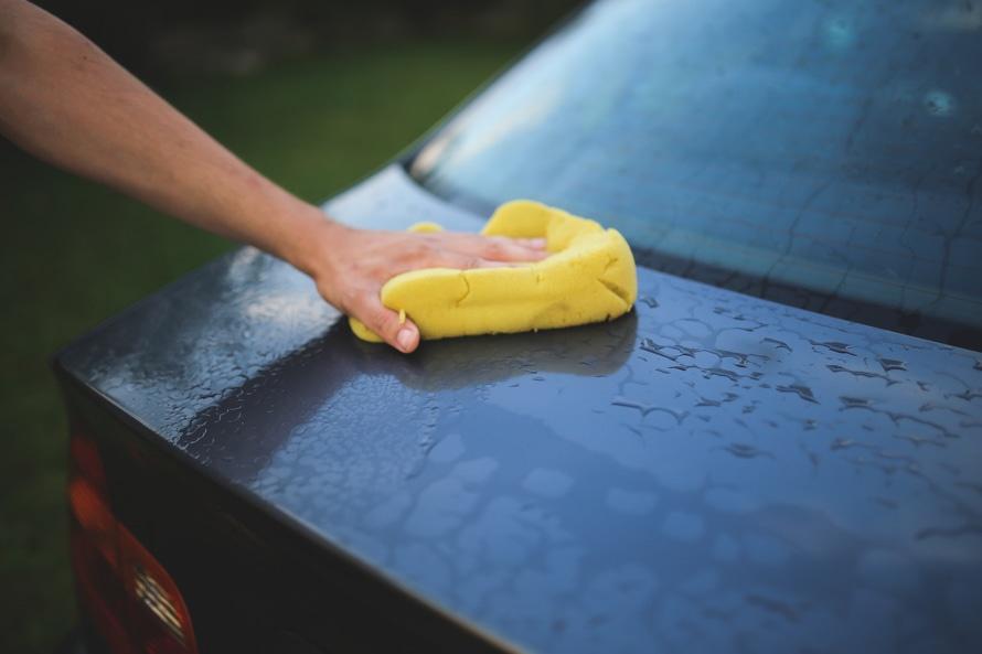 eco-friendly sponge