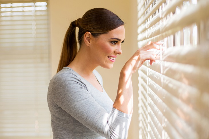 blinds for windows looking