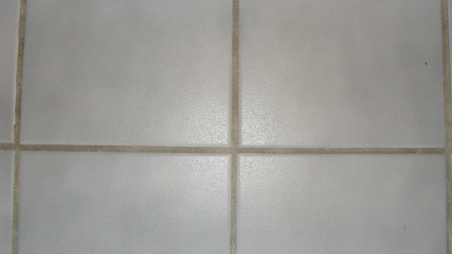 *Whiteout The Grout*