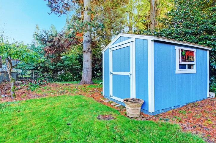 blue garden shed