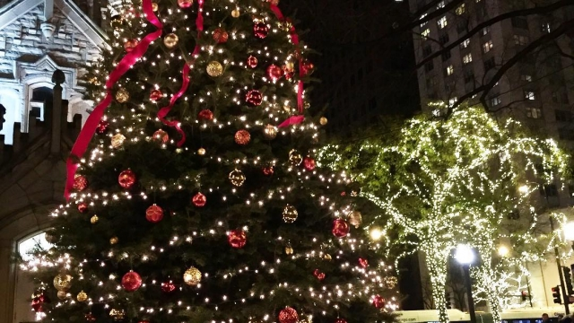 Christmas in Chicago is stunning ✨