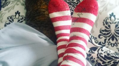 Christmas socks and cat cuddles 😻