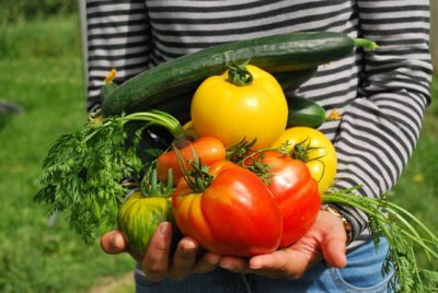 Healthy Home vegetables bright colors