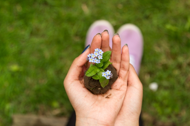Green dirt and flowers in hand