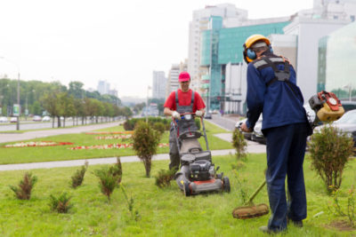 garden maintenance people working