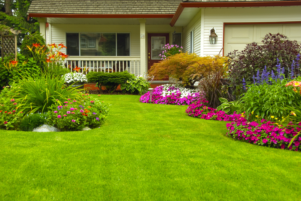 Garden Maintenance outdoor front lawn