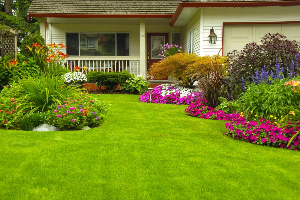 Garden Maintenance outdoor front lawn