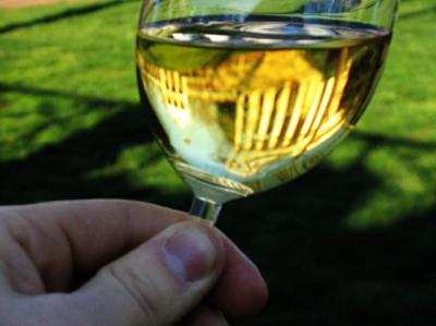 Food Palate taste of chardonnay