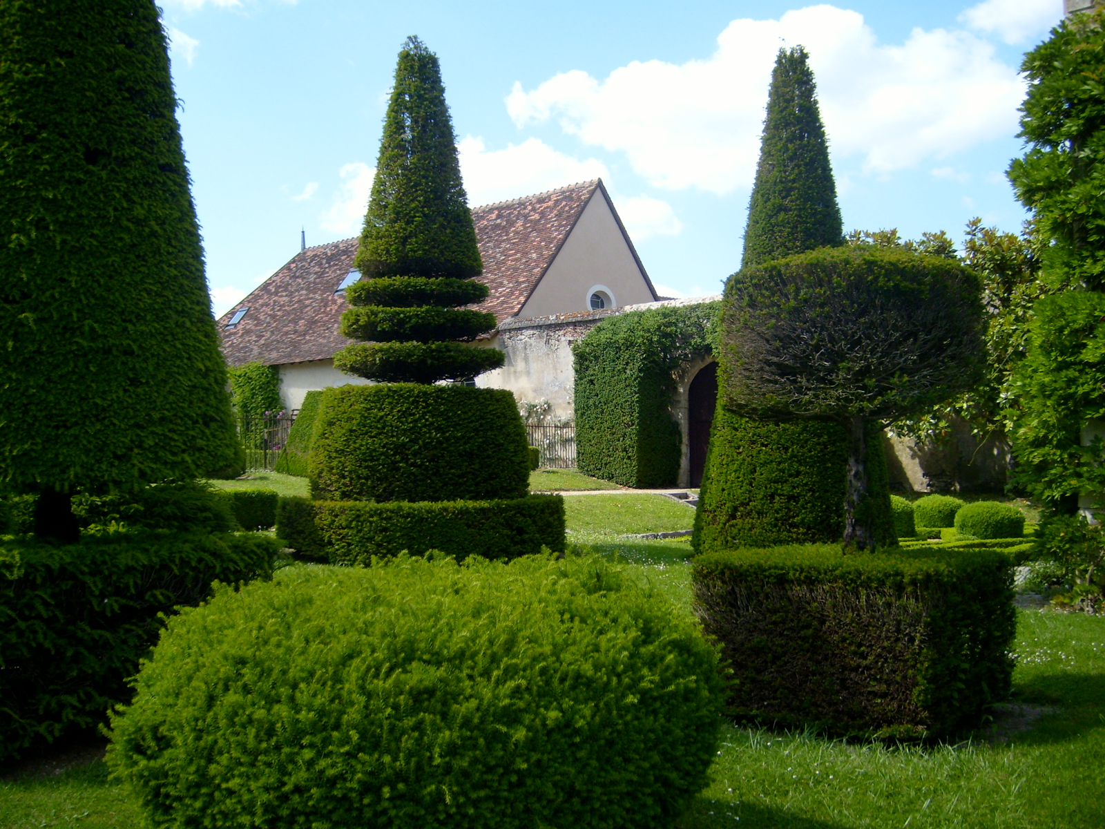 Garden with trimmed bushes perfectly