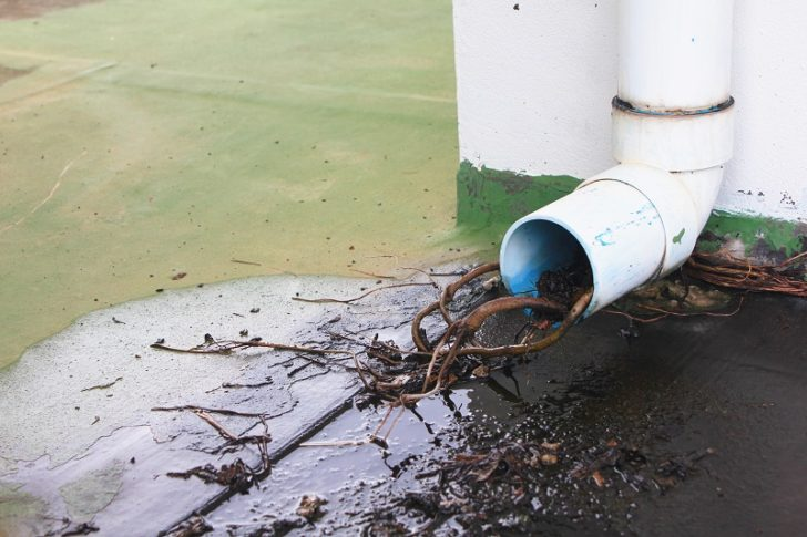 Drain Relining Can Be an Effective Solution to Leak Problems