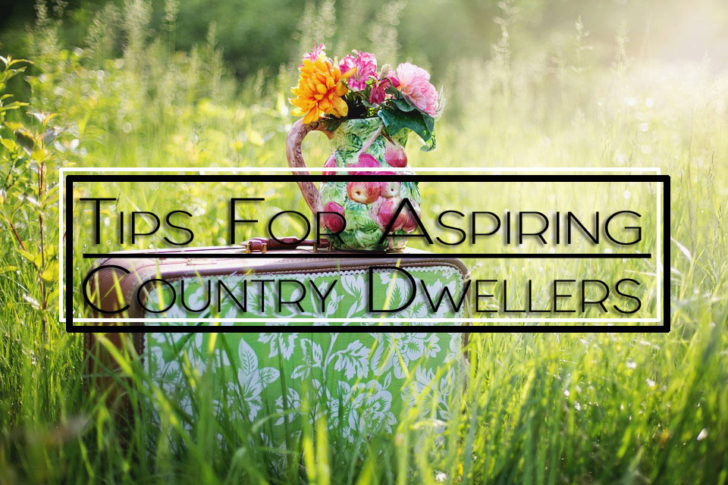 Tips for Aspiring Country Dwellers