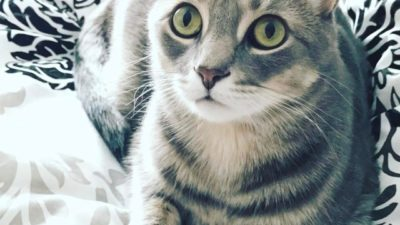 Those eyes 👀💚