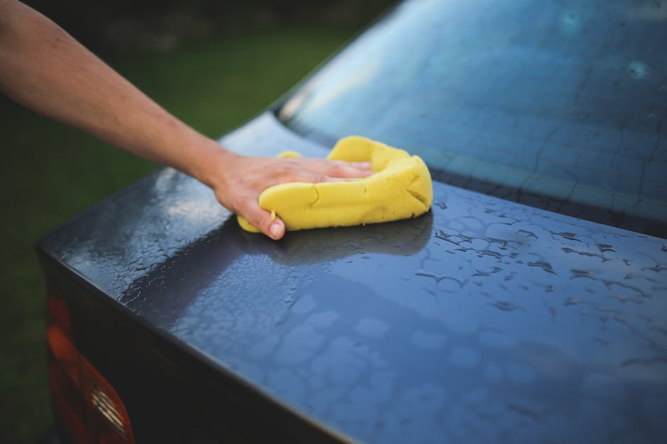 House Guests wipe car off with sponge