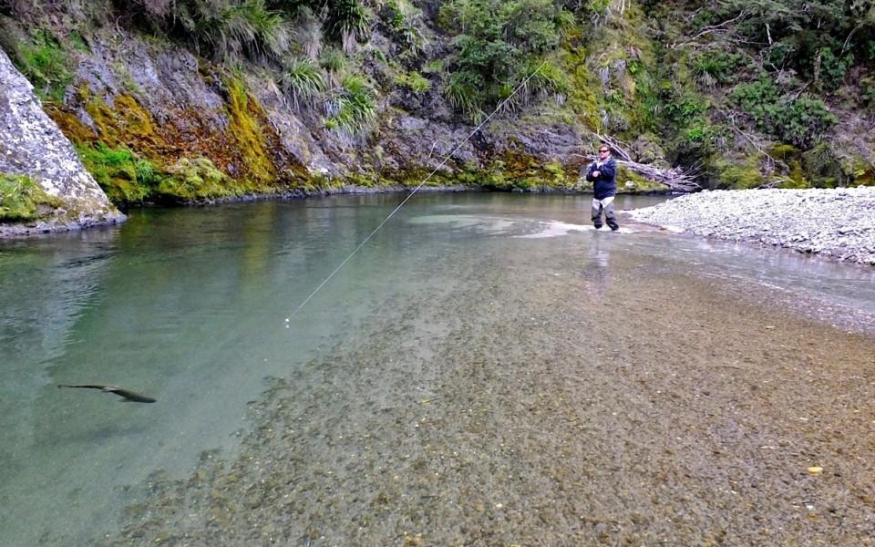 New Zealand man fishing in river