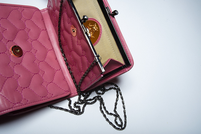 Wardrobe new clutch purse