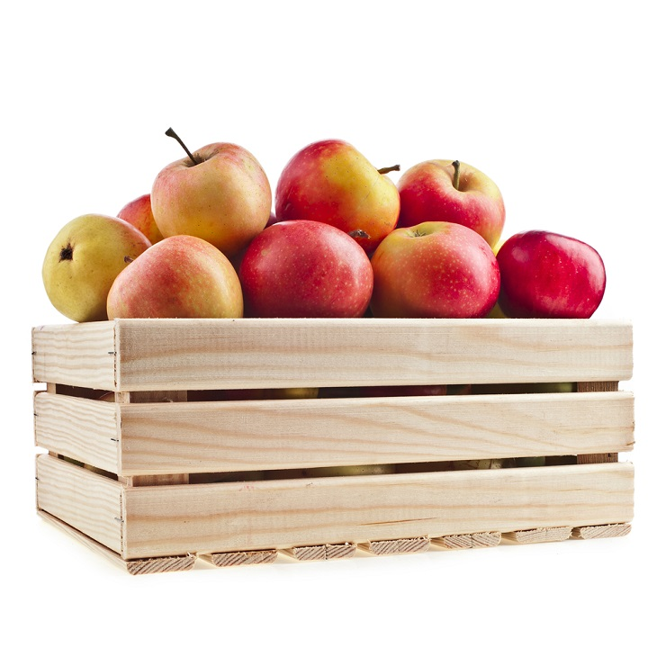 Custom Pallets for fruit and apples
