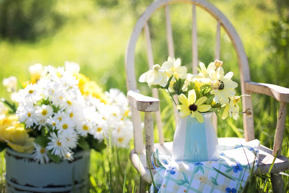 Beautiful Backyard flowers on table