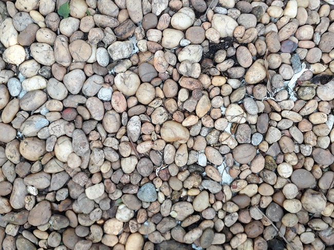 Garden Pebble for lanscape