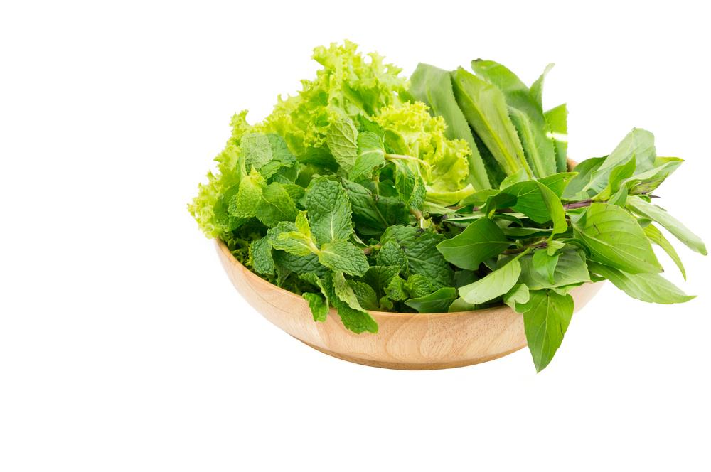 lettuce on spoon green and ready to eat