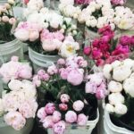 Quick Tips That Can Help in Selecting the Right Flowers for Home Decor
