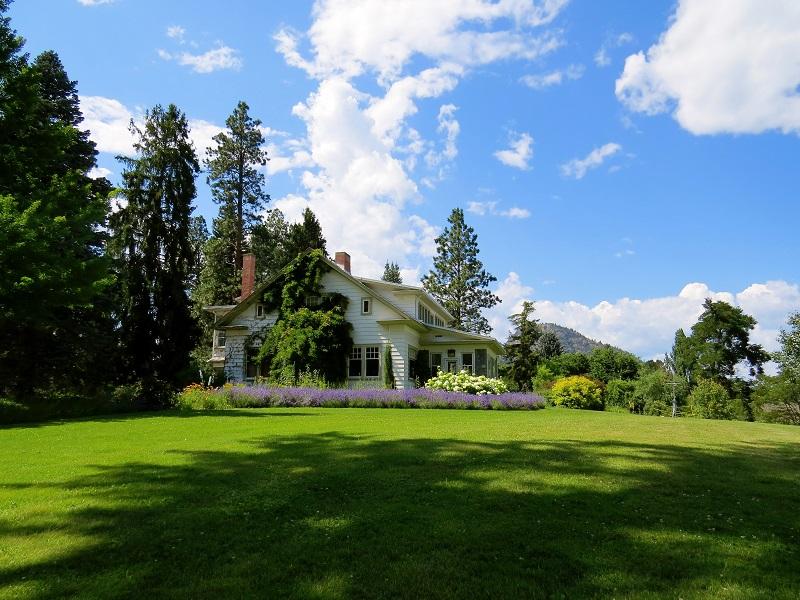 Landscaping Ideas lush green grass