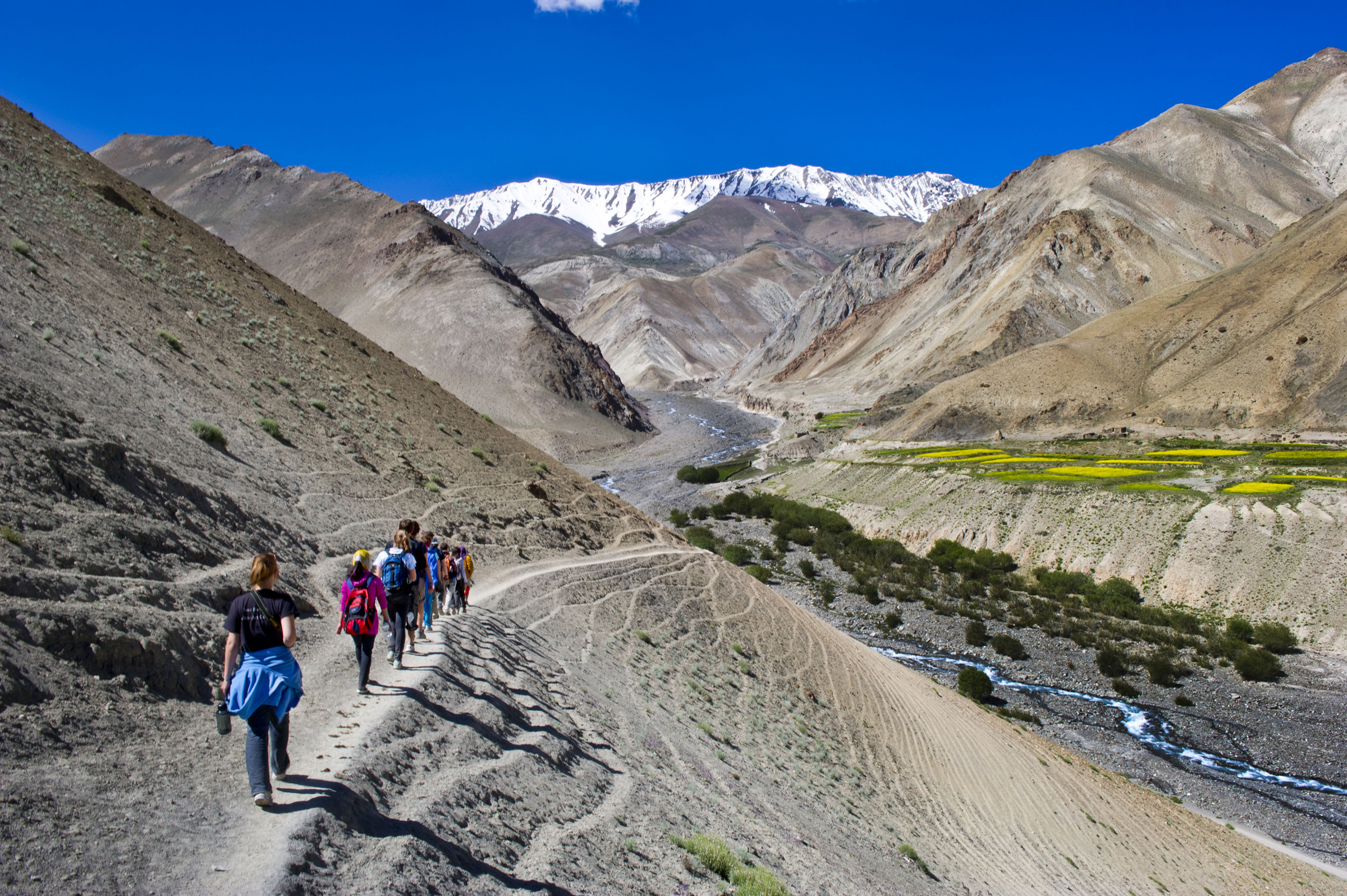 trekking on path in Ladakh