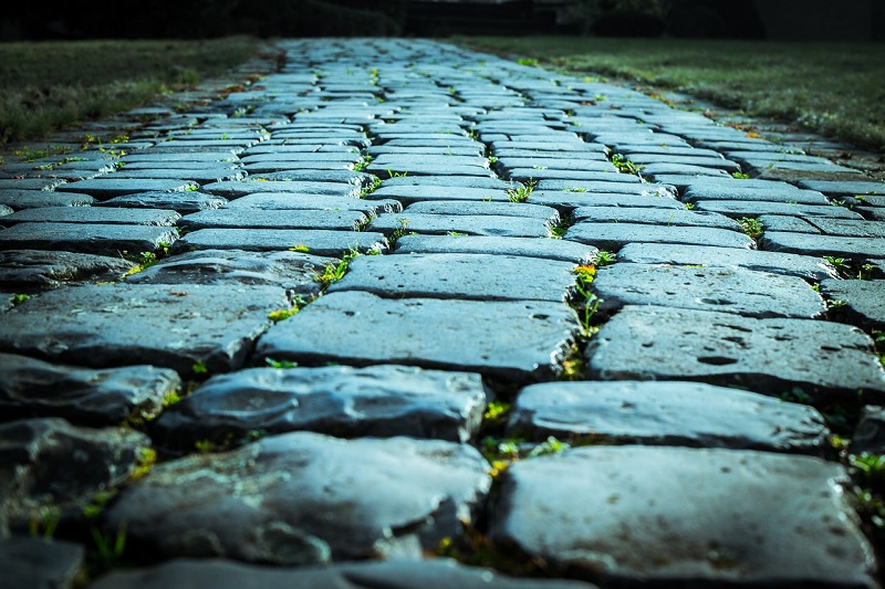 Paving Stones path leading somewhere