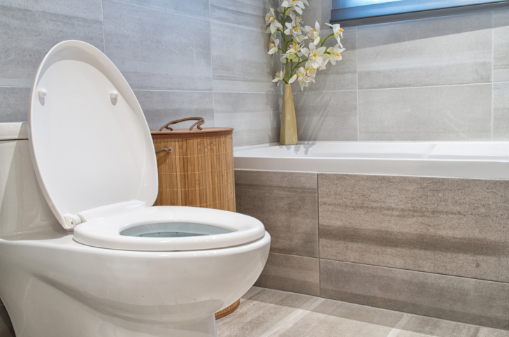 Toilet Selection 101: Key Tips On How To Select The Perfect Toilet For Your Needs and House