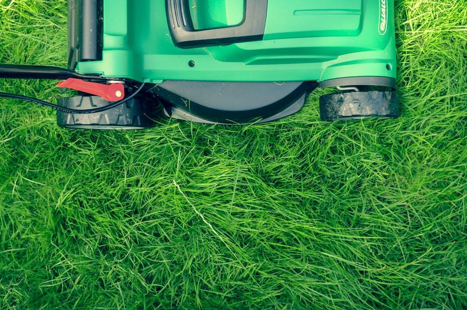 lawn mowing grass around garden