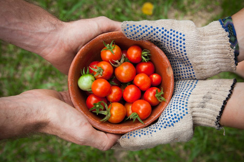 Neighborhood sharing vegetables