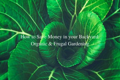 How to Save Money in your Backyard- Organic & Frugal Gardening