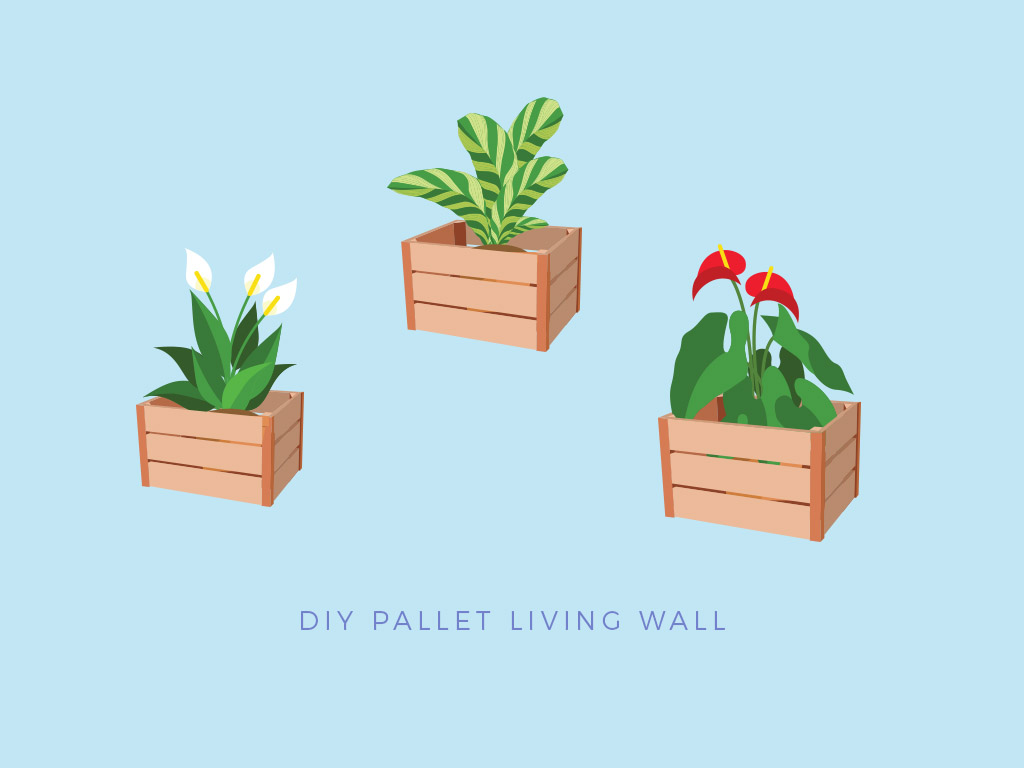 pallet project home living wall