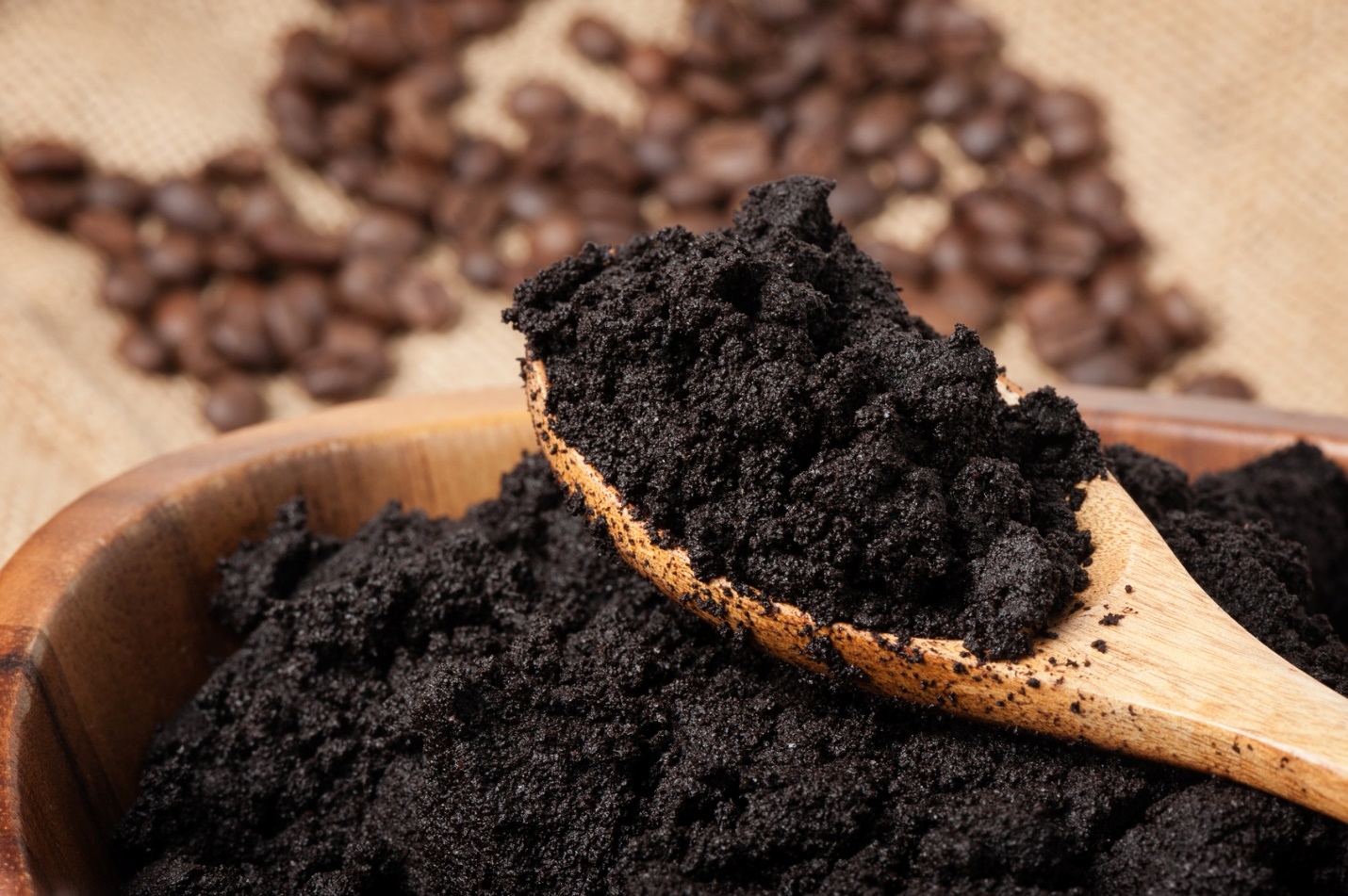black soil free from garden pests