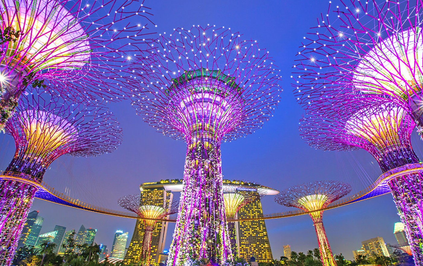Singapore Night Tour