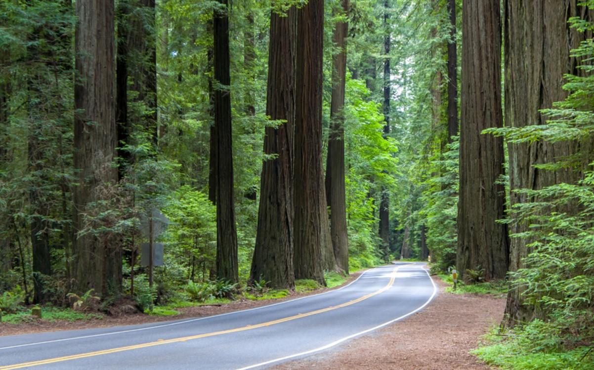 route 36 california