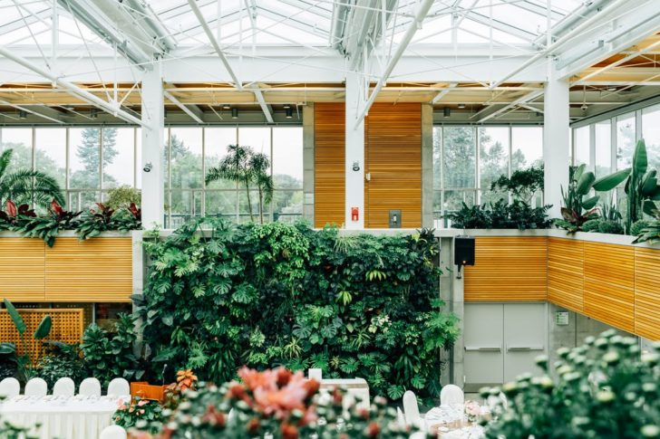 How to Make Your Greenhouse the Perfect Place for Your Plants